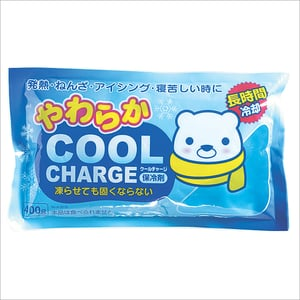 Cool Charge Gel Ice Pack