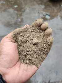 Zinc Ash 40%