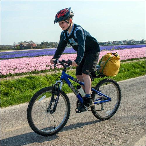 Kids Rock Lobster Bicycle