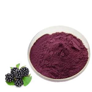 Blackberry Fruit Extract