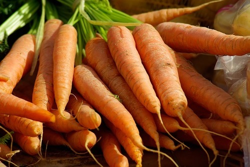 Carrot Liquid Extract