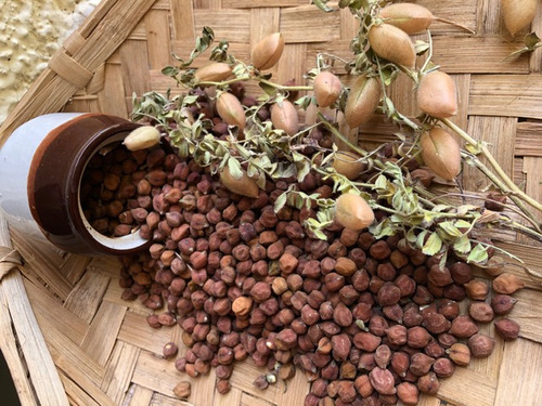 Indian Chickpea (Red Chana)