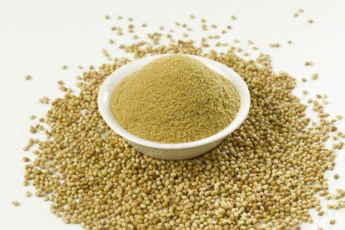Coriander Extract (Coriandrum Sativum Extract)