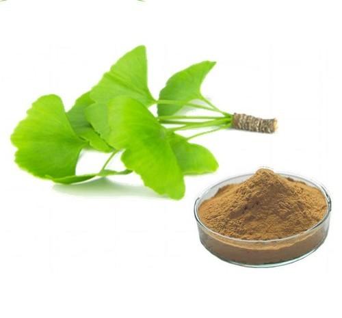 Ginkgo Biloba Leaf Extract (Ginkgo Biloba Leaf Extract )