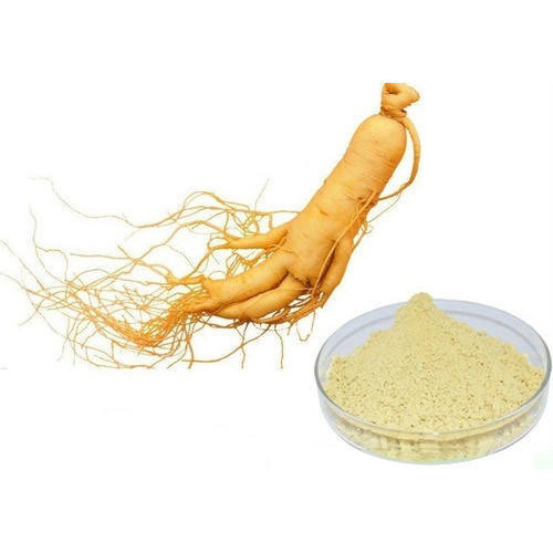 Ginseng Root Extract (Panax Ginseng Extract)