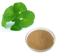 Gotu Kola Extract (Centella Asiatica Extract)