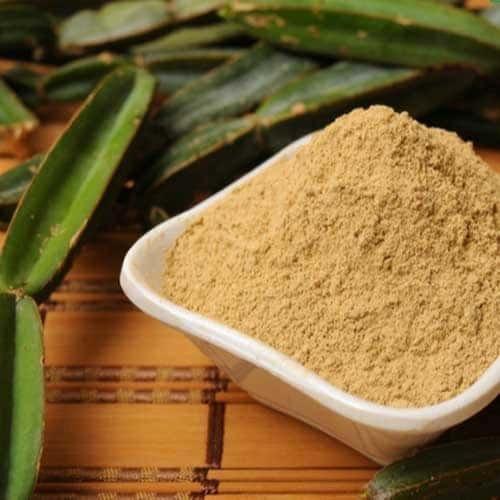 Hadjod Extract (Cissus Quadrangularis Extract)