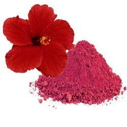 Hibiscus Flower Extract (Hibiscus Sabdariffa Extract)