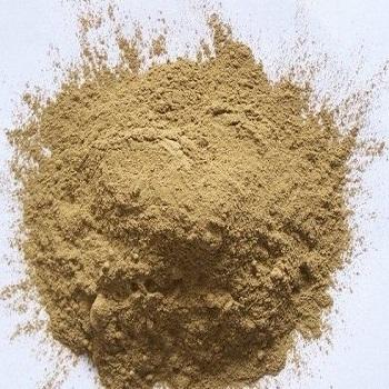Hoodia Gordonii Powder (Cactus Extract)