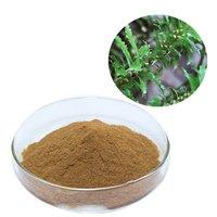 Huperzia Serrata Extract (Huperzia Serrata Extract)