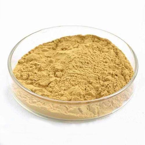 Jamun Extract (Euginia Jambolana Extract)