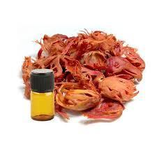 Mace Oil (Javatri)