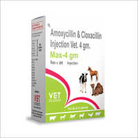 Amoxycillin and Cloxacillin Veterinary Injection