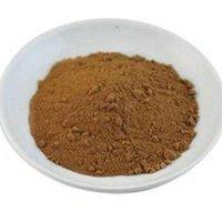 Maitake Mushroom Extract Powder (Grifola frondosa Extract)
