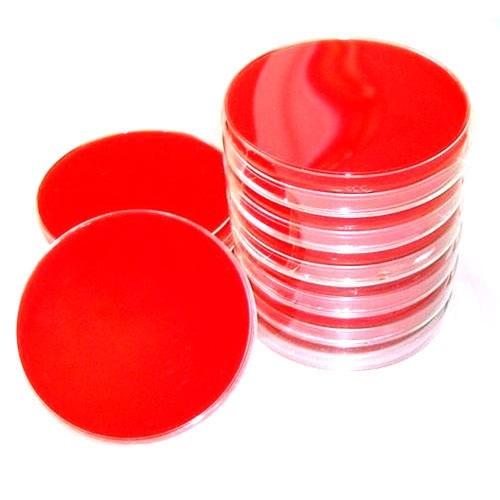 Sheep Blood Agar Plates
