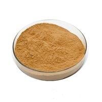 Makoi Extract (Solanum Nigrum Extract)