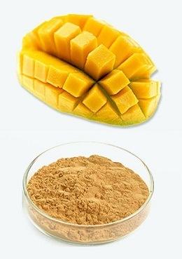 Mango Extract (Mangifera Indica Extract)