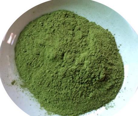 Moringa Extract (Moringa Oleifera Extract)