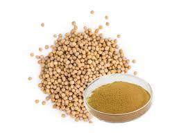 Mustard Seed Extract (Sinapis Alba Extract)