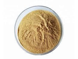 Oats Extract (Avena Sativa Extract)