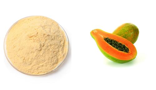 Papaya Extract (Carica Papaya Extract)