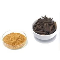 Piper LongumExtract (Piper Longum Extract)