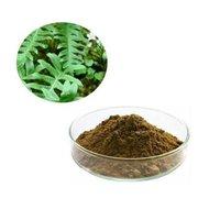 Polypodium Extract (Phlebodium Aureum Extract0