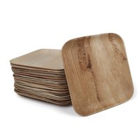 Disposable Areca Palm Leaf Plates - 8 Inch Square | 100% Natural, Export Quality, Eco Friendly, Available In Bulk