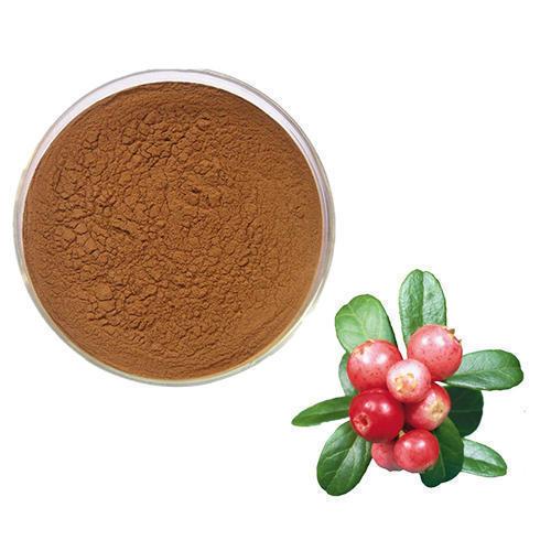 Rose Hip Extract (Rosa Damascena Extract)