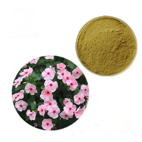 Sadabahar Extract (Vinca Rosea Extract)