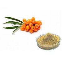 Seabuckthorn Extract (Hippophae Rhamnoides Extract)