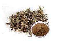 Valerian Extract (Valeriana Officinalis Extract_)