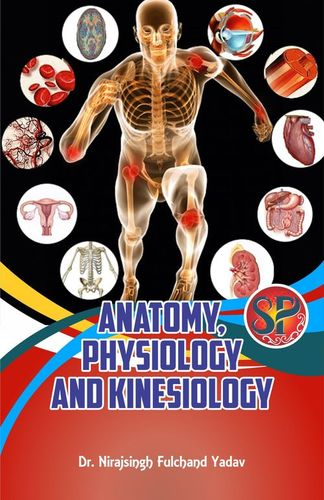 Anatomy Physiology And Kinesiology