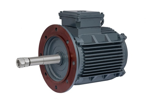 Cooling Tower 3 Phase Induction Motor