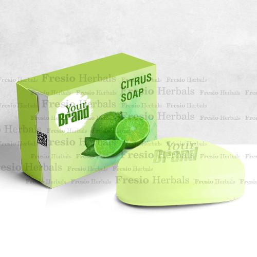 Citrus handmade soap