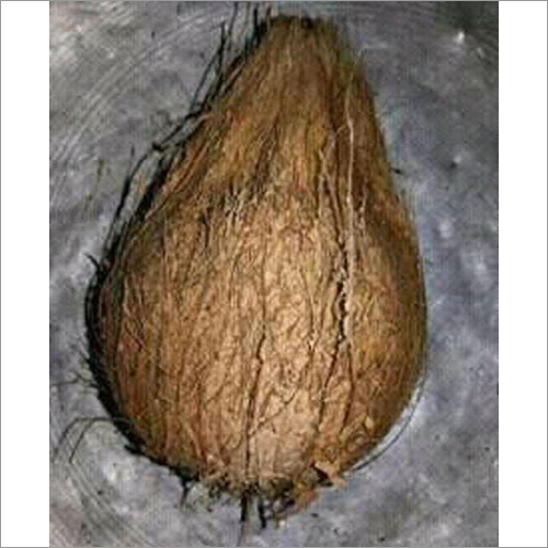 Natural Husked Coconut