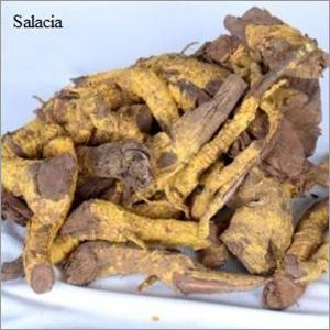 Dry Salacia