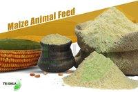 Hominy Feed