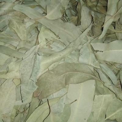 Eucalyplus (Nilgiri Leaves Powder)