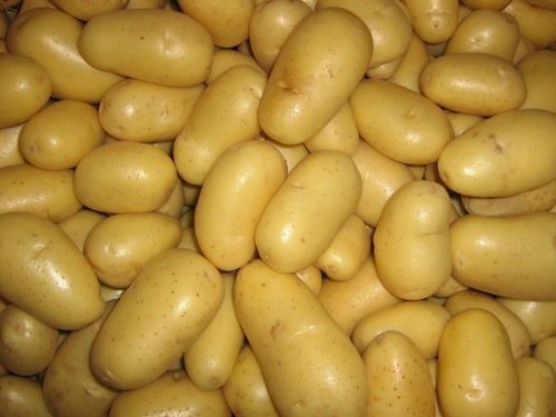 Potatoes Available in Stock