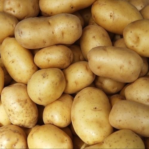 Organic Fresh Potatoes