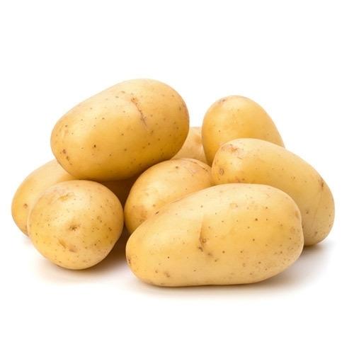 Fresh Bulk High Quality Potato