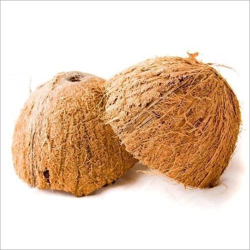 Fresh Coconut Shell