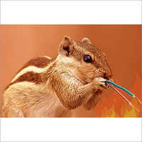TapStar AR & ART Rodent cum Termite Repellent Masterbatch