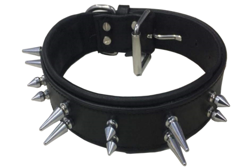 Collar With Spikes