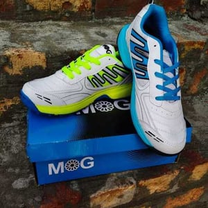 Cricket sports shoes