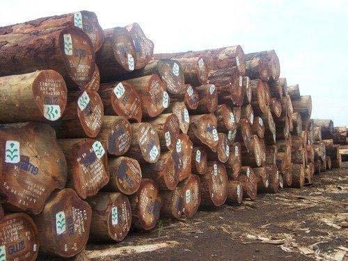 European Round Logs ( Timber Logs,African Timber Logs)