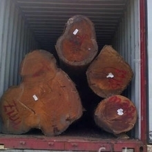 Pine,Spruce, Birch, Oak, Ash , African Hardwood