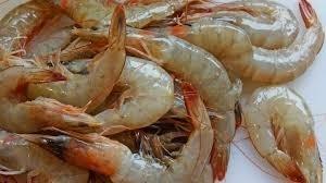 Selling Fresh Frozen Whole Vannamei Shrimp White / Black Tiger Shrimp /Prawn