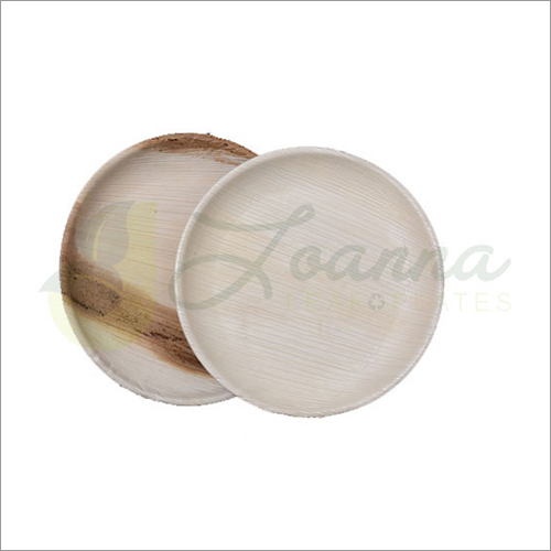 8 Inch Round Shallow Plate